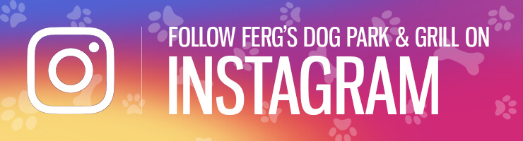 Follow Ferg's Dog Park & Grill on Instagram